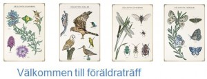 CSD Ågrenska